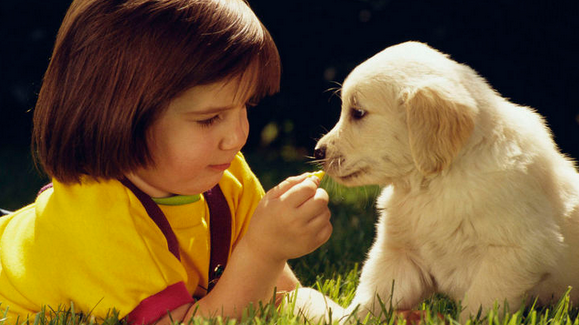 children to get a new puppy